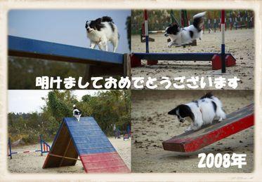 2007_120100091_6